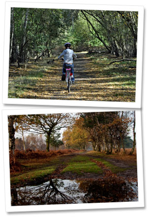 Girl Cycling on Skipwith Common